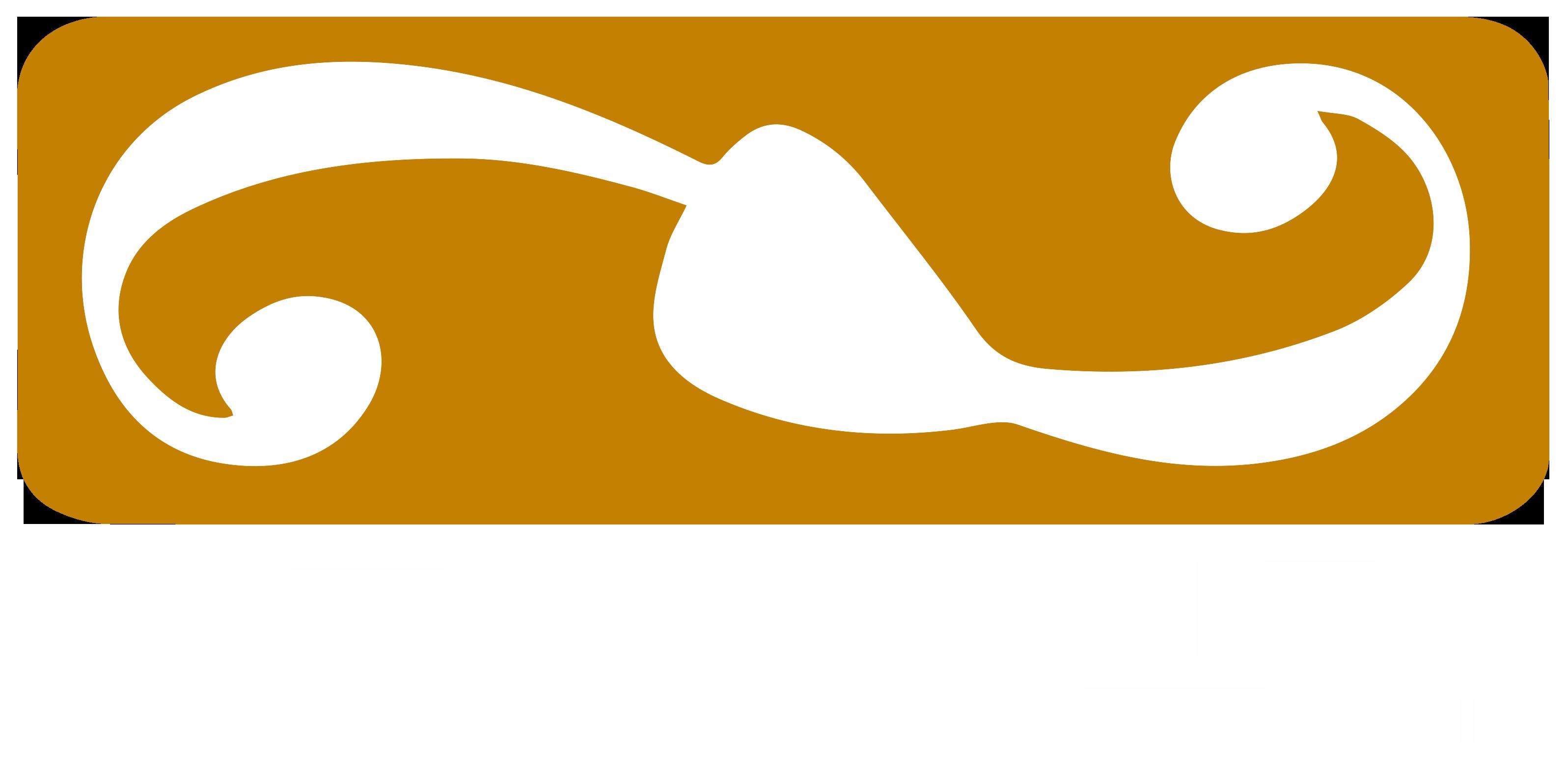 Sicily Music Academy